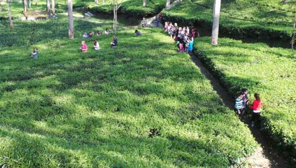 objek wisata di wonosobo jawa tengah