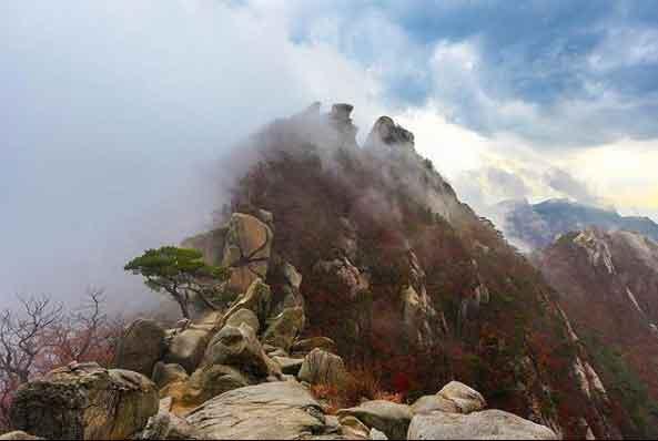 wisata menarik di korea terbaru